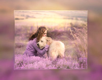 Ashley 0015 Lavender Fields - signed